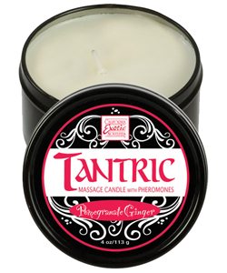 Pomegranate Ginger Tantric Soy Candle ~ SE2254-20